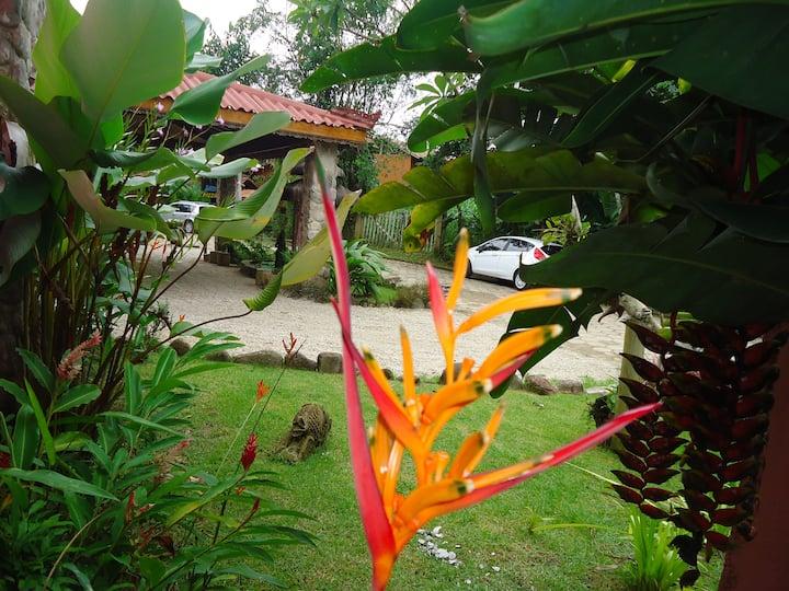 Pousada Bali Suites Itamambuca - Duplo econômico