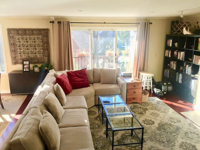 Quiet Oasis in Downtown Stamford - 1 Bedroom Condo