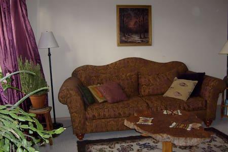 Ojo Caliente 3 bedroom-2 bath House - Ojo Caliente - Rumah