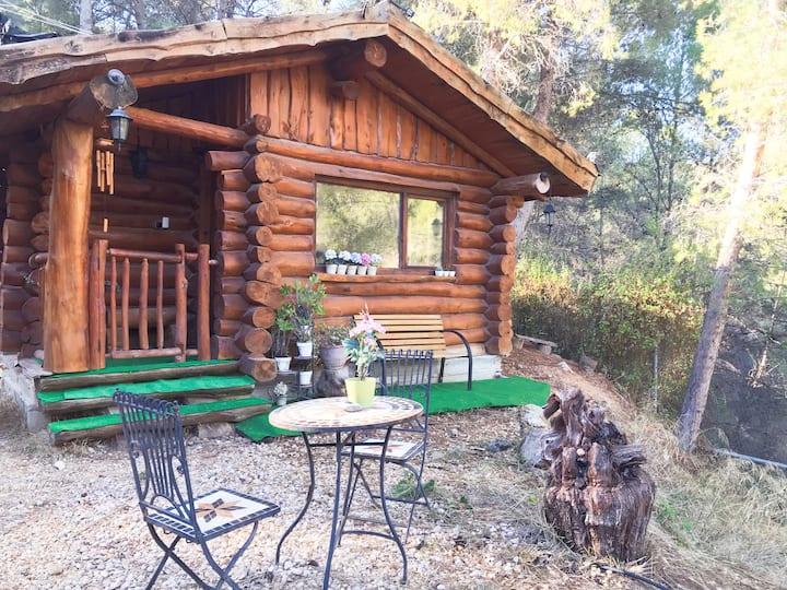 Casa de madera acogedora situada en la naturaleza