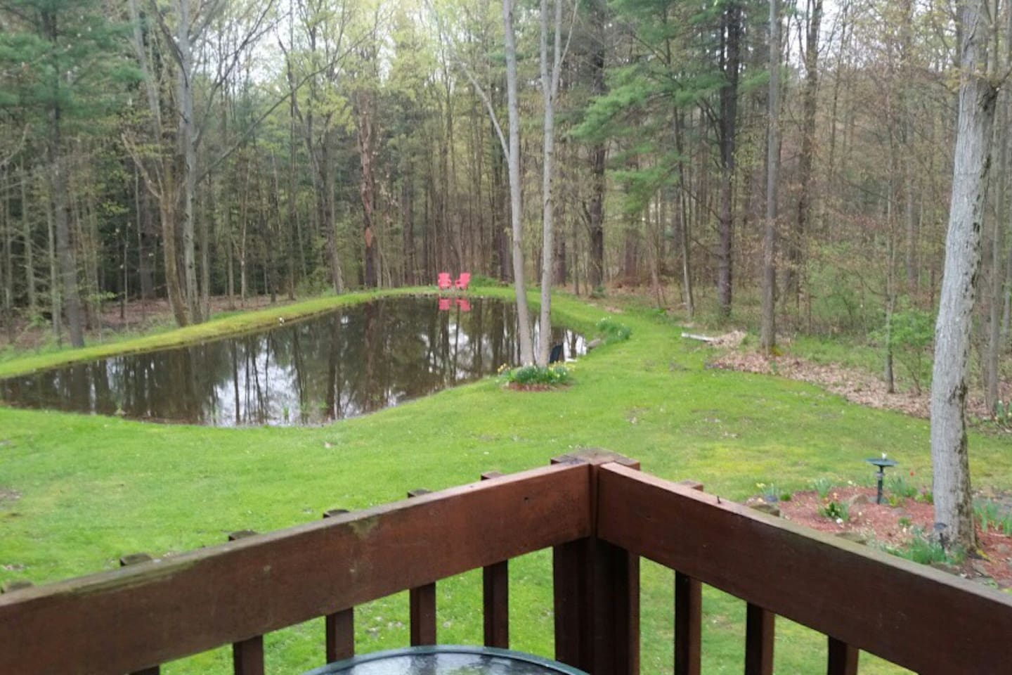 The pond from the back deck