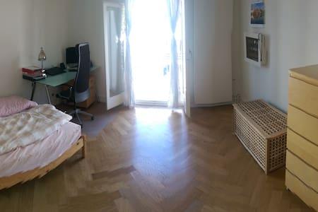 Gemütliches grosses Zimmer - Basel - Daire