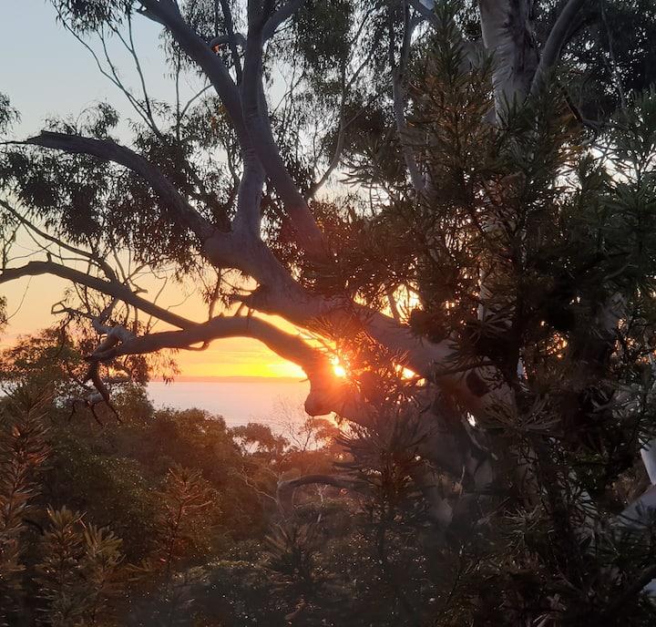 2 bed Banksia Spa Villa. Kingfisher. Fraser Island