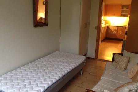 Nice room north of Copenhagen - Nivå
