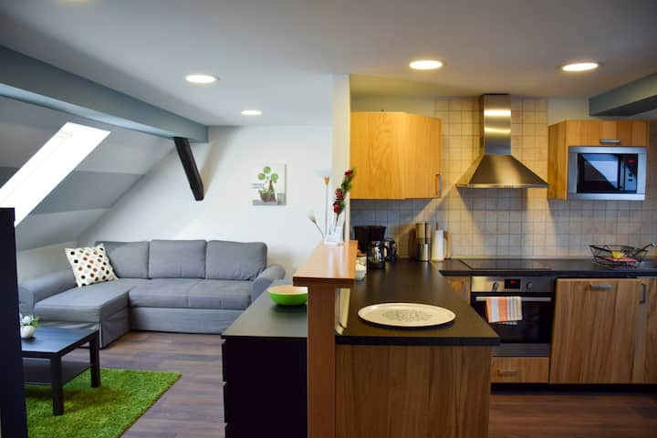 Attic-apartement with a pleasant atmosphere