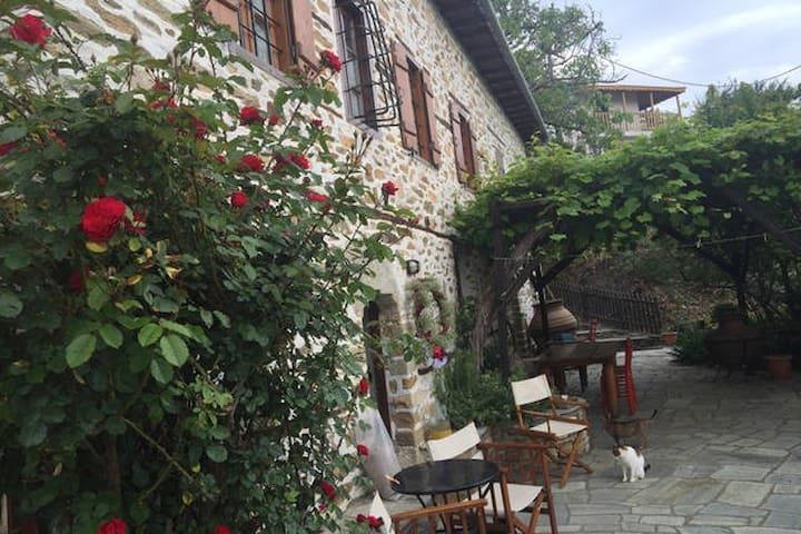 San Lorenzo MOUNTAIN SEA-VIEW STUDIO - Agios Lavrentios - Apartment