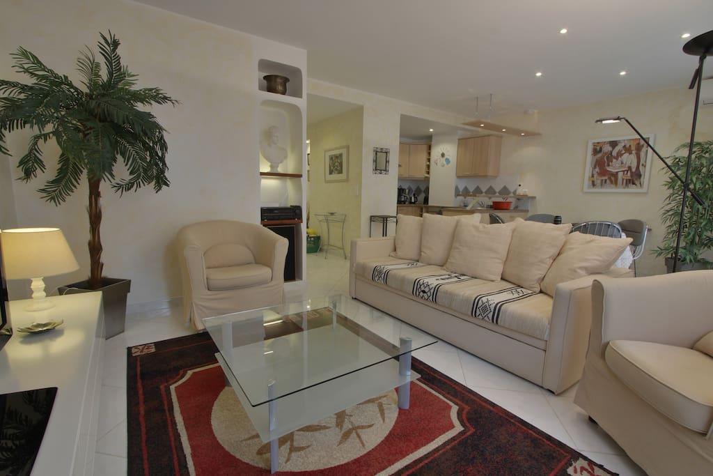 Salon/ séjour et cuisine ouverte