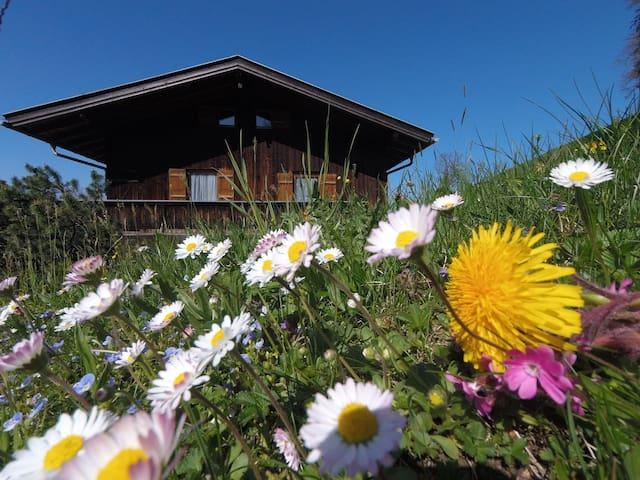 Urlaub auf dem Bauernhof - Traumhafte Ferienwohnung mit WLAN, Balkon, Garten, See- und Bergblick; Parkplätze vorhanden
