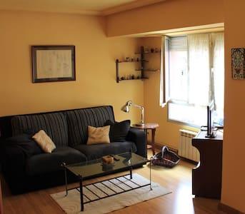 Apartamento céntrico y práctico - VUT-336-AS