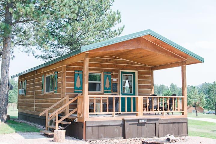 The Cabin at Dakota Dream B&B--Your own log cabin.