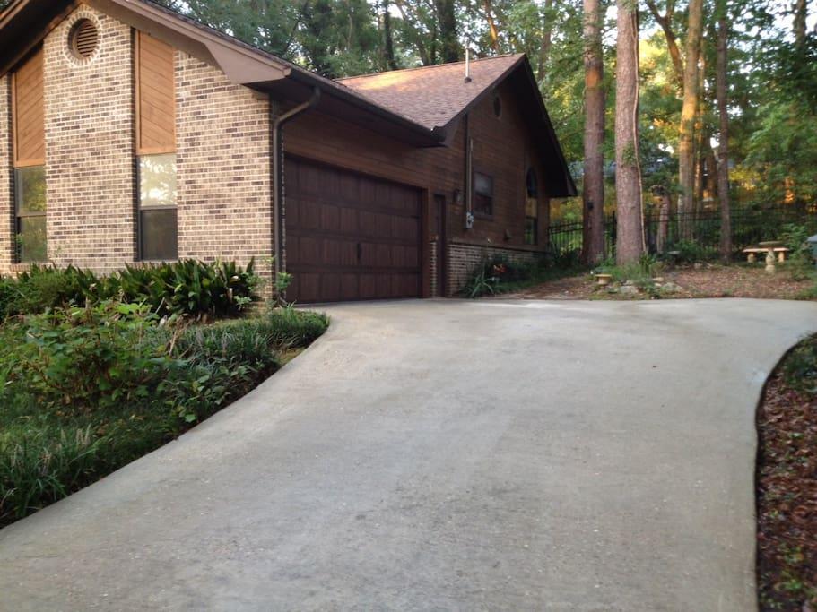 Driveway and side yard