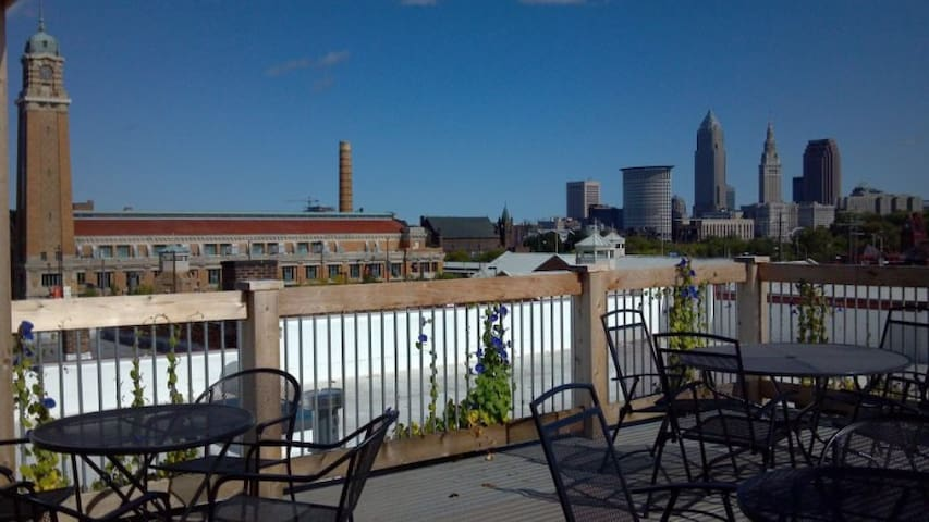 Great views from the shared roof deck.