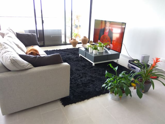 Pvt Room in 5th floor, pool, patio, new building - Mérida - Appartement