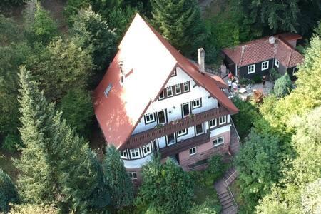 Rehglück im Zentrum von Bad Herrenalb Black Forest