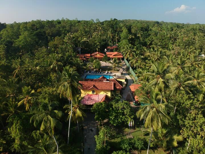 Resort Like No Other, luxurious cabana room