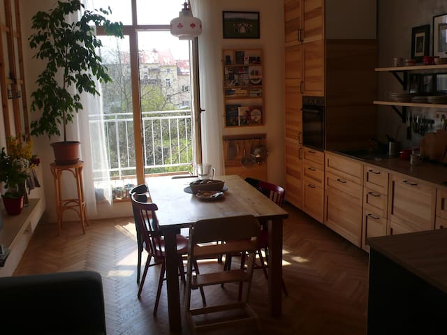 Prostorný byt u centra - Spacious apartment