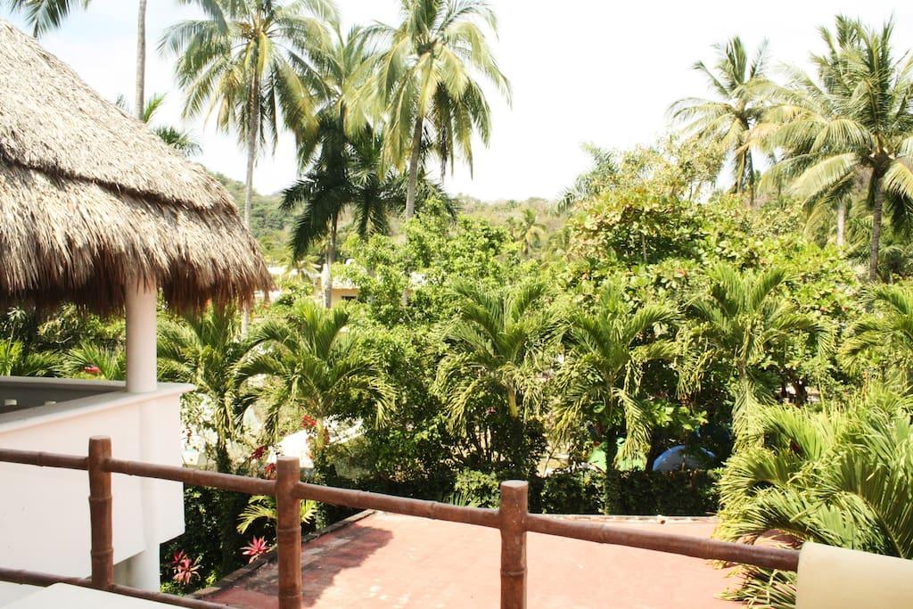 Vista terraza frente
