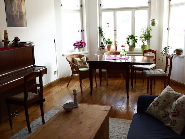 Stilvolle große Altbauwohnung mit Herz - Leipzig - Apartment
