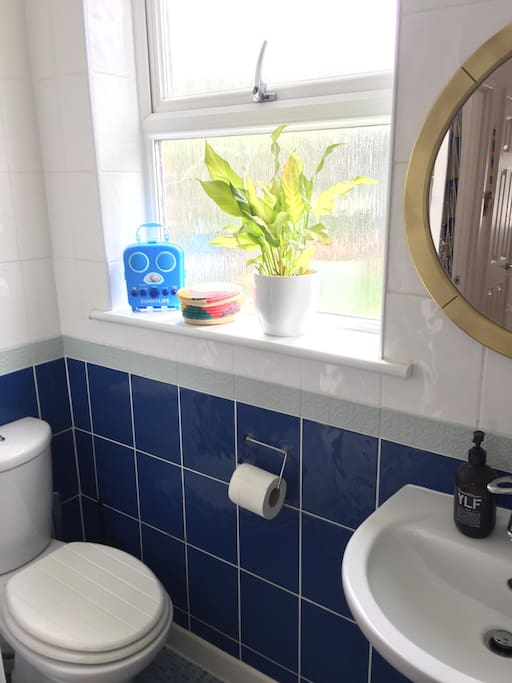 Bathroom with a shower, toilet and sink.