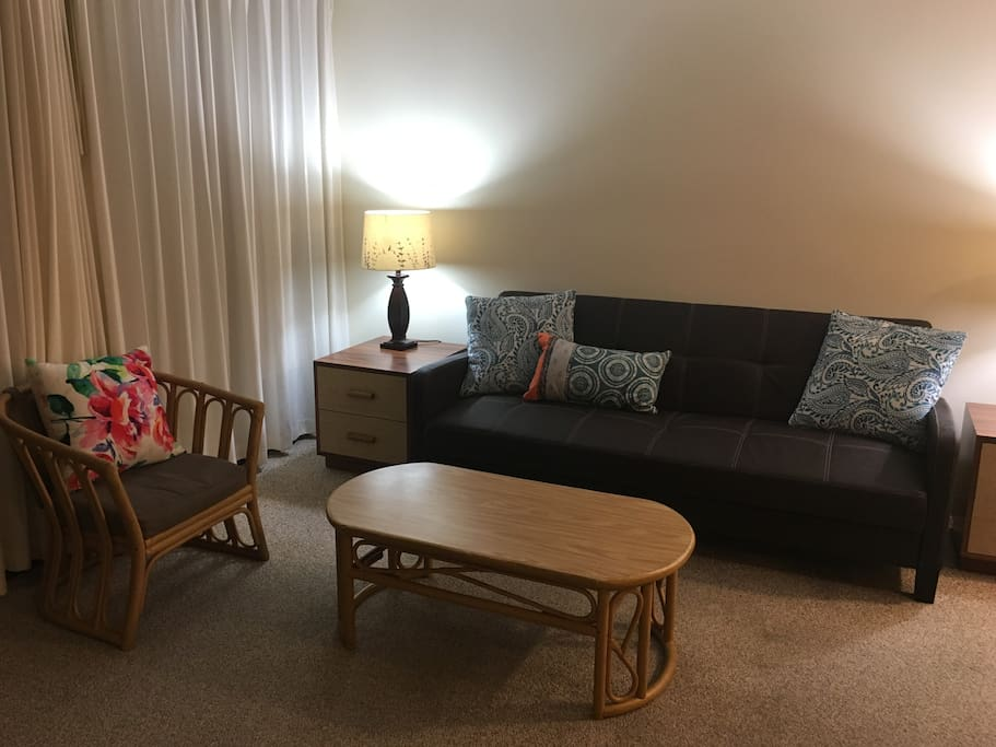 Living room area - Couch folds down and sleeps one