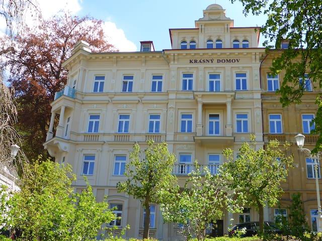 Apartment Drevokocur - - Mariánské Lázně - Suíte de hóspedes