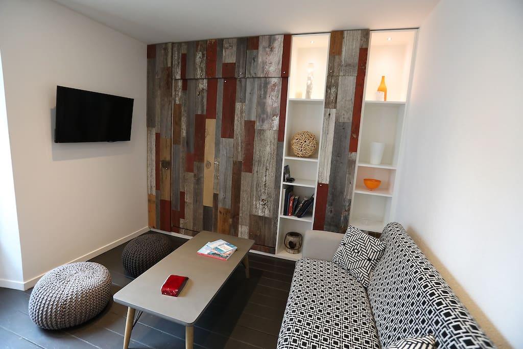 Le salon avec son vrai lit escamotable - The living room with a real bed hidden