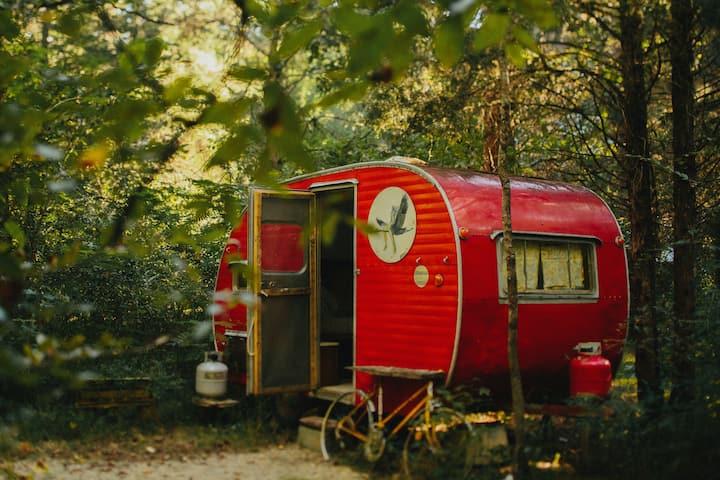 Camp G.R.I.T.S. Camper.