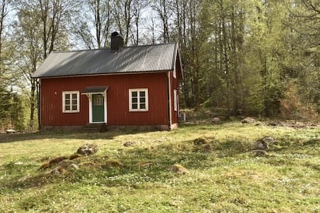 Cozy country house located in scenic forest