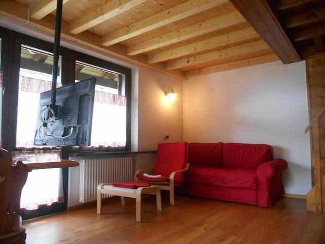 Zona salotto con divano letto 2 posti e tv plasma 42 pollici