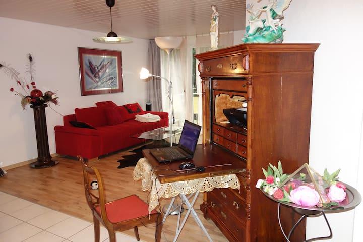 3,5 Zimmer Wohnung mitten im Appenzell