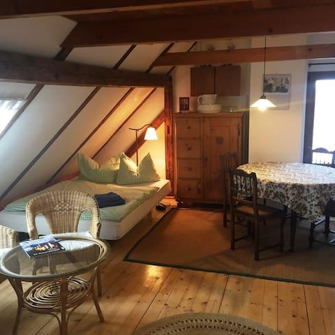 Einraum-Appartement auf schönem Vierseitenhof