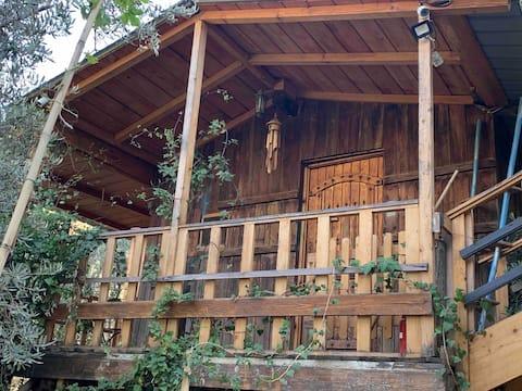 Nirvana's Bungalow - cabin in a charming garden