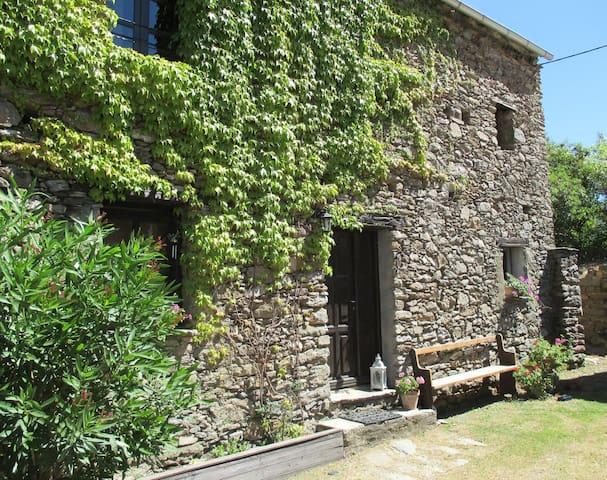 Ferienwohnung Sole e Ventu 30 qm - San-Giovanni-di-Moriani - Leilighet