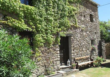 Ferienwohnung Sole e Ventu 30 qm - San-Giovanni-di-Moriani