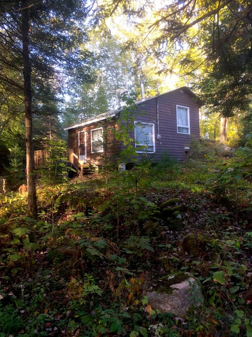 Our cottage is located directly across from our access point on the lake, with a single lane road in between.