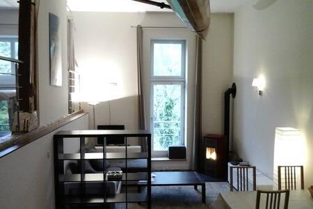 Loft dans hameau à 20 metre de la Douane Suisse - Divonne-les-Bains