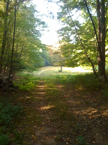leading to great hiking or leisurely strolls...