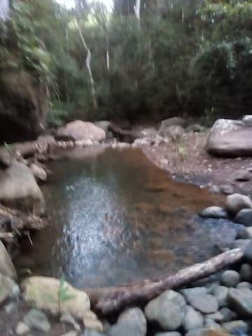Disfrutas del Campo y Bosque en zonas rurales