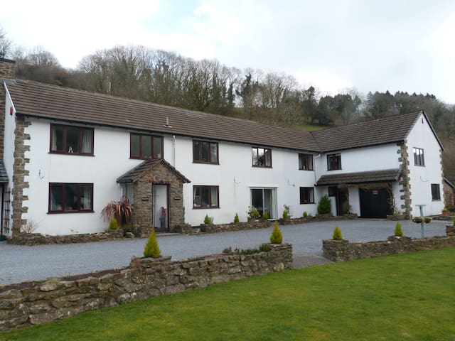 Country Guest House - Cwmduad - Bed & Breakfast