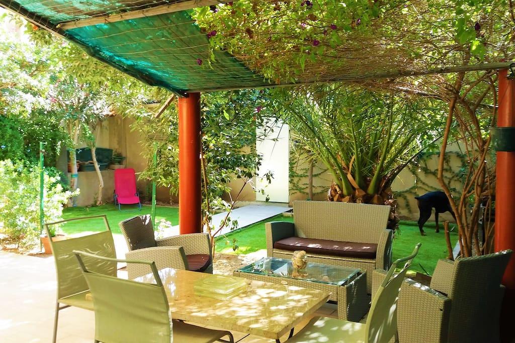 jardin, terrasse avec accès au garage