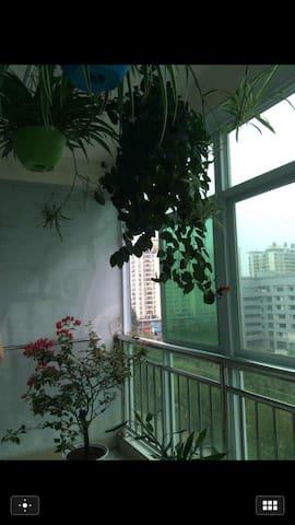 闹市中的幽居 - 海口 - Apartmen