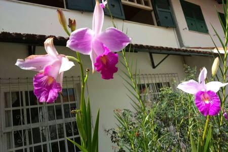Casa em Nova Friburgo - Nova Friburgo