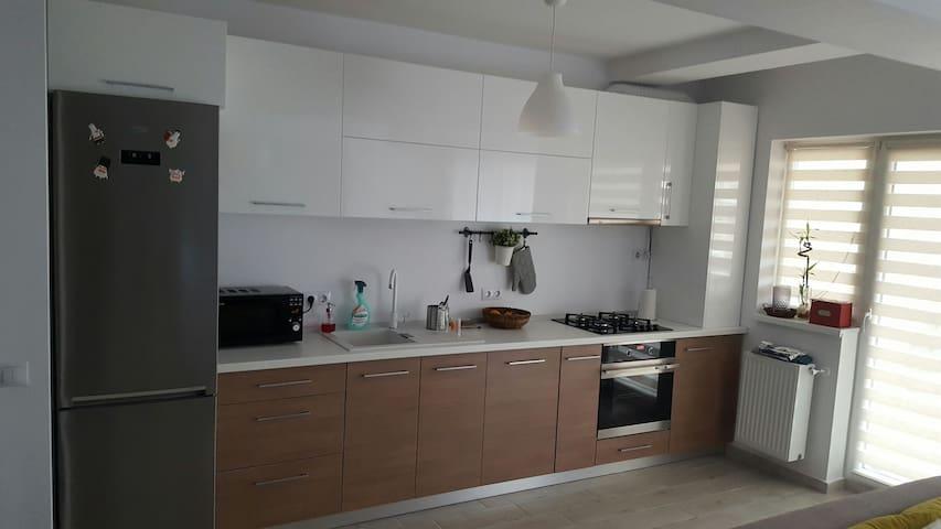 Big modern apartment - Șelimbăr - Leilighet