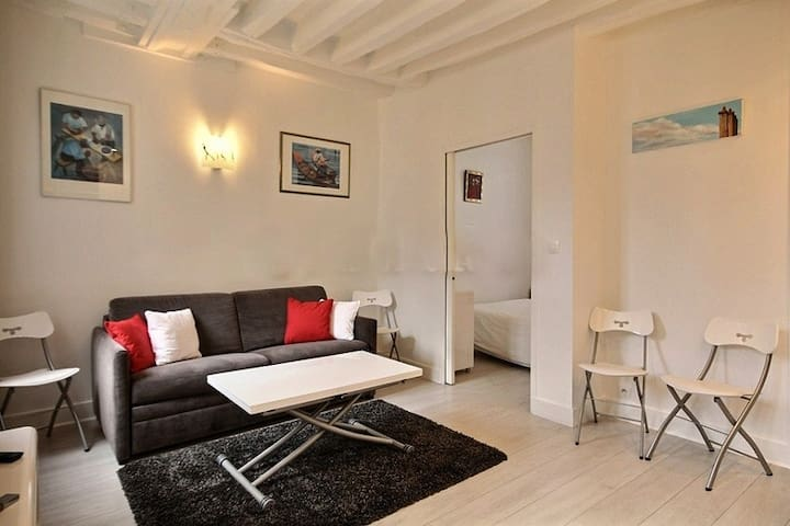 Living   The 16 square meters living room has 2 double glazed windows facing courtyard . It is equipped with : double sofa bed, coffee table that can become a dining table for 4 people, cable, TV, built-in shelves, decorative fireplace, hard wood floor.