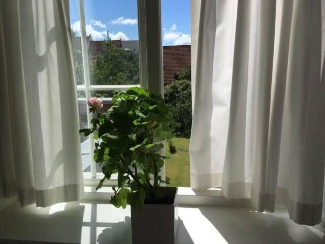 Lyst værelse med dejlig tagterrasse
