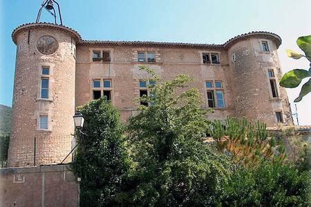 Appartement N° 2- 2 places château XVI ème siècle