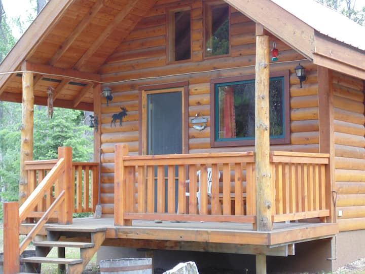 Rustic Moose Cabin