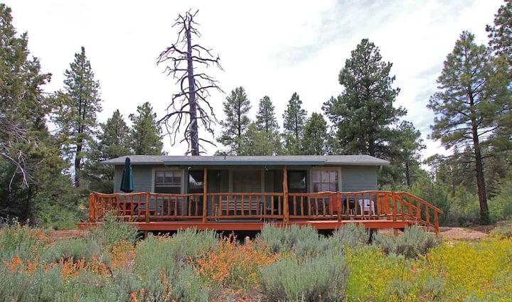 FreeSpirit Cabin (East Rim of Zion National Park)