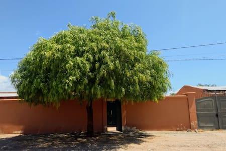 Casa del Molle