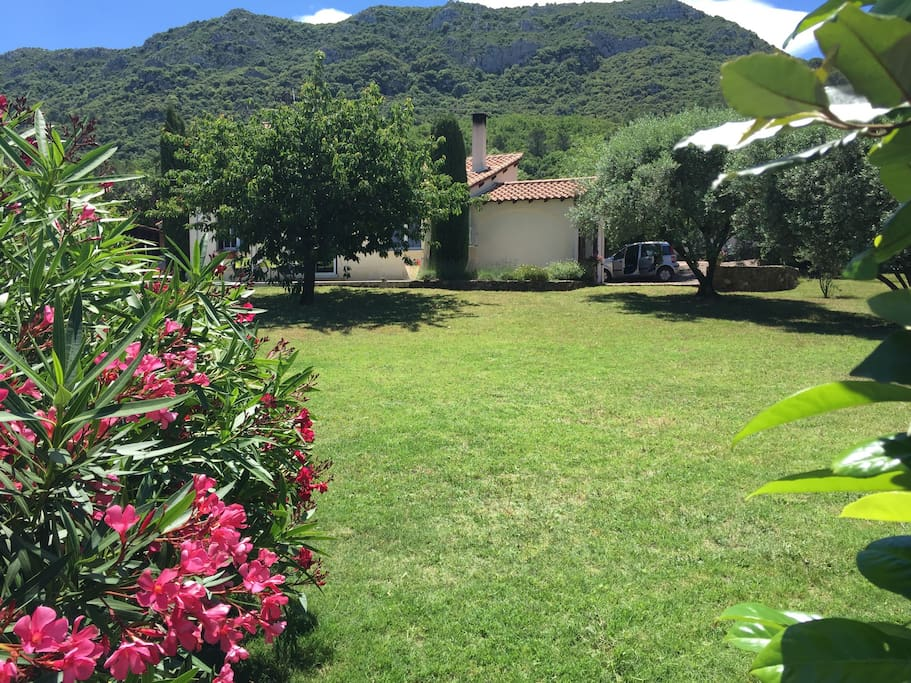 Grand jardin privatif de 2000m2 entièrement clôturé.  La montagne que l'on voit derrière c'est le mont Liausson qui domine la vallée et le lac .